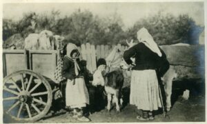 INTERNATIONAL EXHIBITION THE WOMEN AND THE GREAT WAR (8)