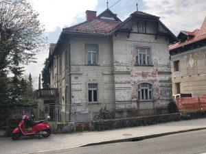 vila-zlatica-zacetki (1)